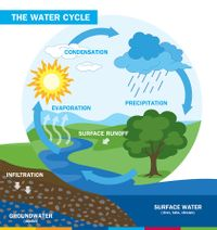 AM-Water-Cycle.jpg