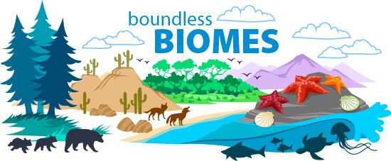 biomes-world.jpg