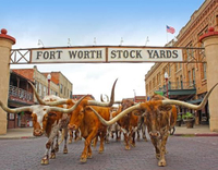 Fort Worth.jpg