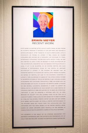 Racae Meyer - 4 Entrance Curatorial Statement.jpg