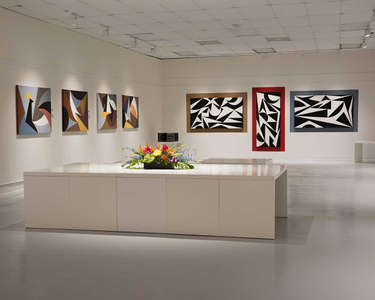 Racae-Meyer---2017-Studio-Show---B&W-and-T&U-walls-with-table-flowers---Beckman.jpg