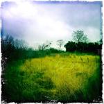 Elgin land5.jpg
