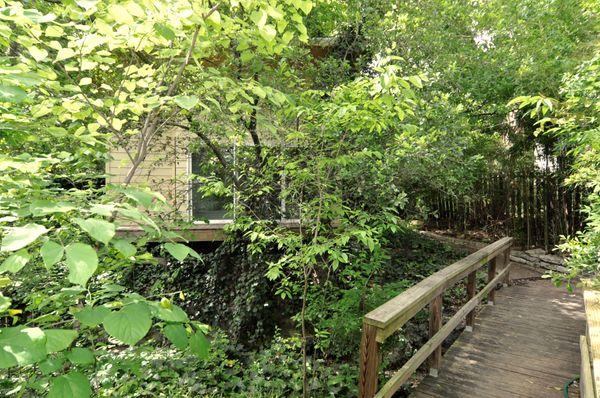 4214 Wilshire Bridge Walkway (edit DSC_0159).jpg