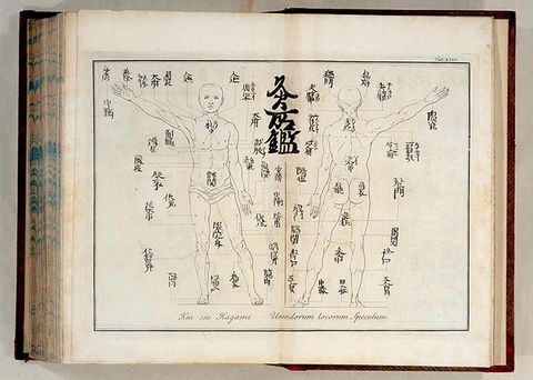 Acupuncture-Chart small2.jpg
