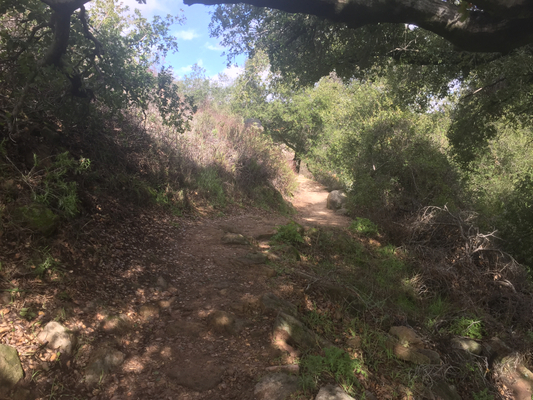 San Juan Loop Trail