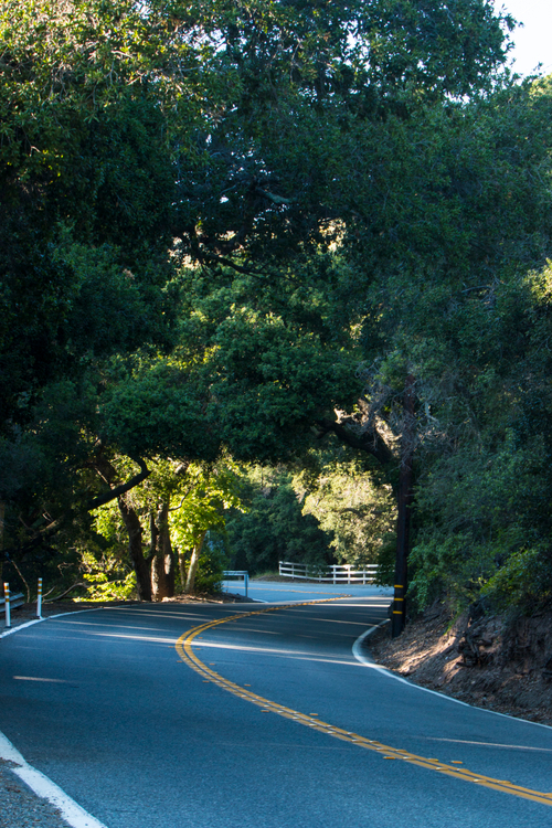 Live Oak Canyon Road