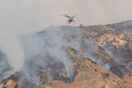 Canyon Fire