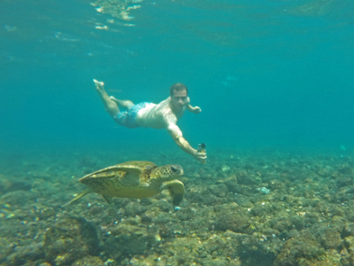 Swimming with a honu in Hawaii
