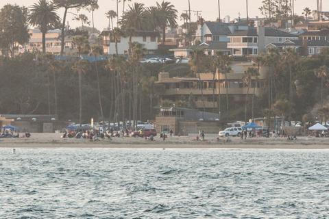 Shark Attack in Newport Beach