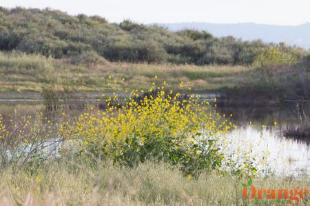 O'neil Regional Park