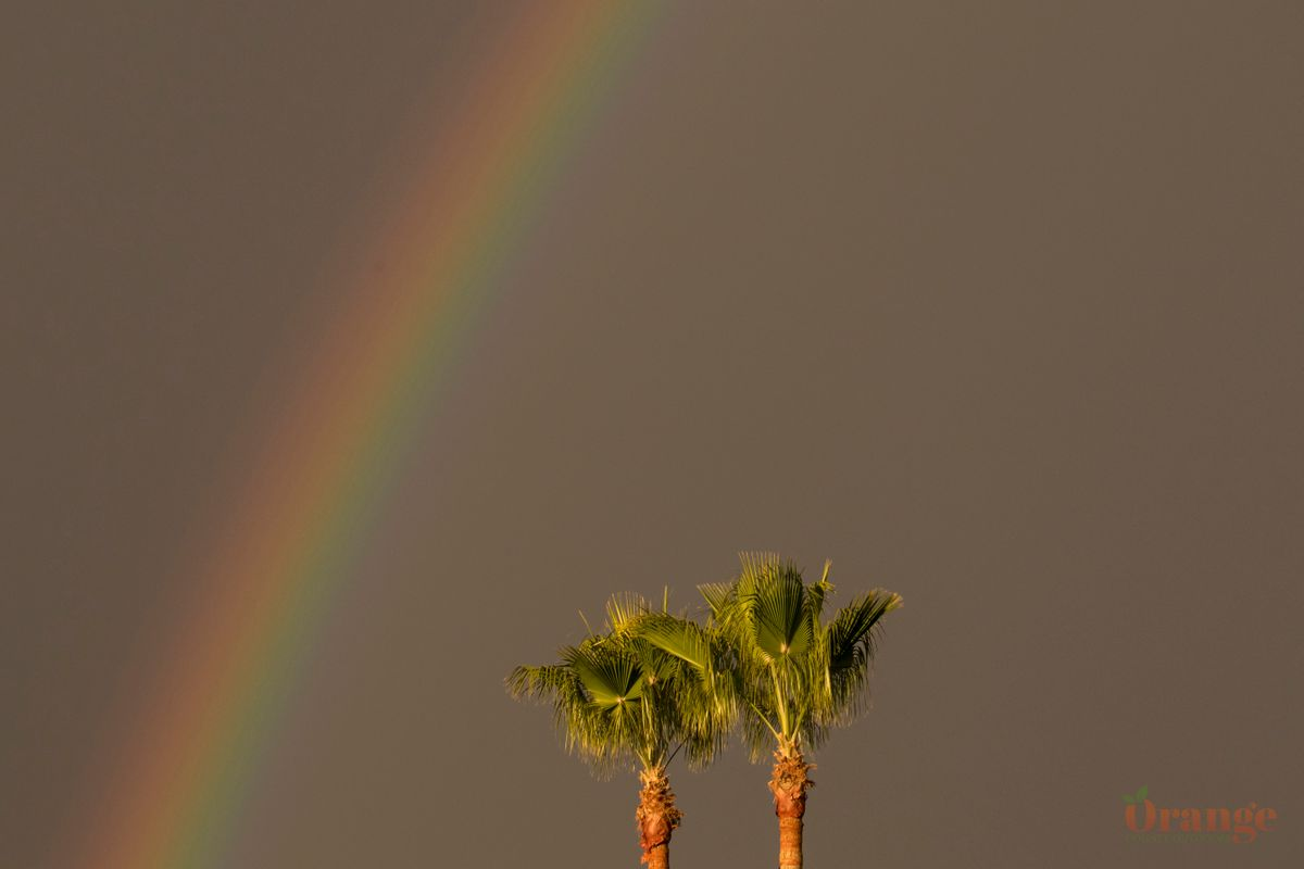 California Rainbow