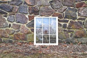 Windows (9 Pane)