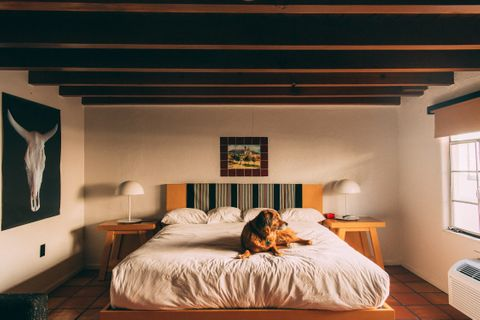 dog friendly hotel santa fe