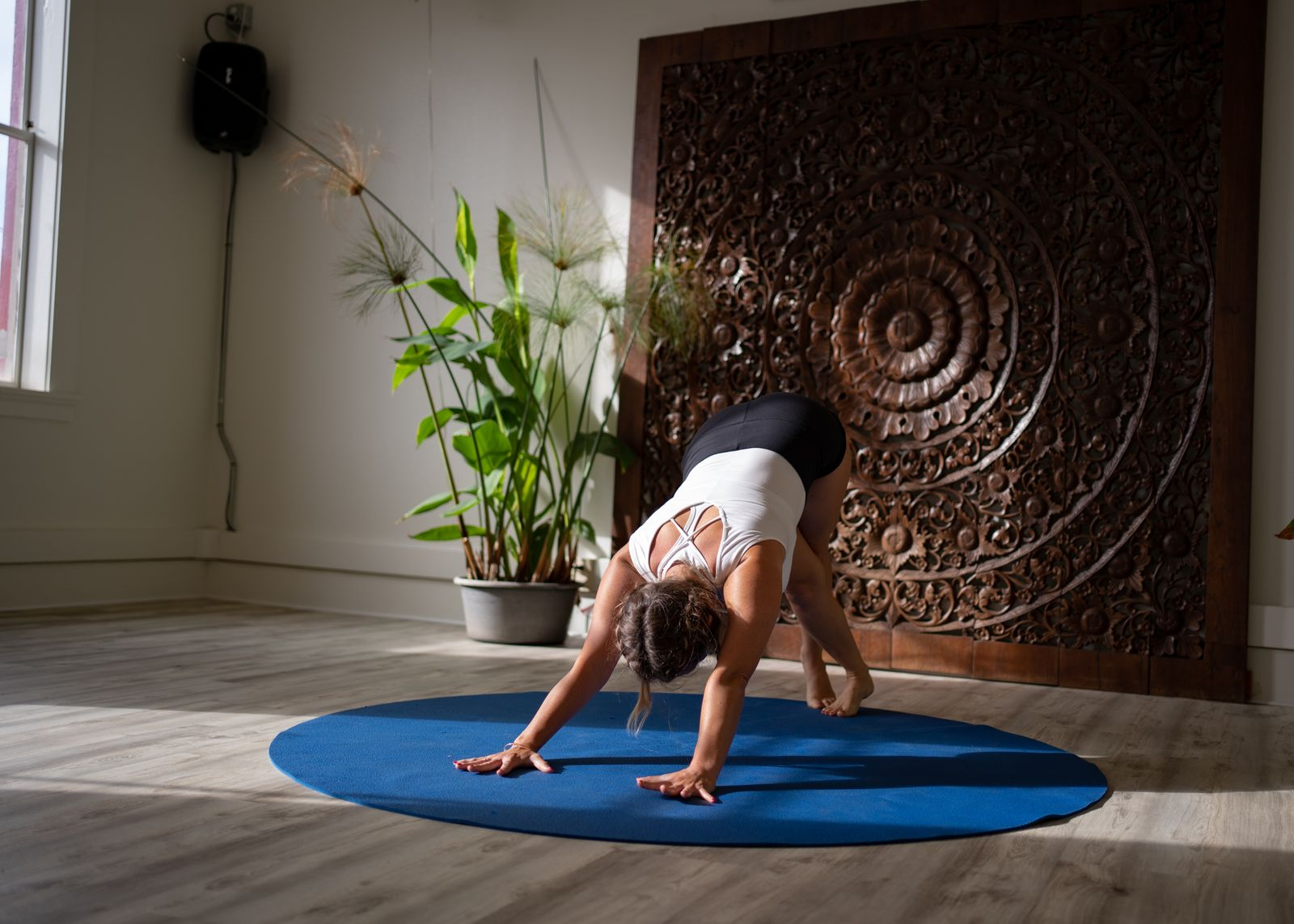 Molly-Masaoka-Yoga-Sequencing-Training.jpg