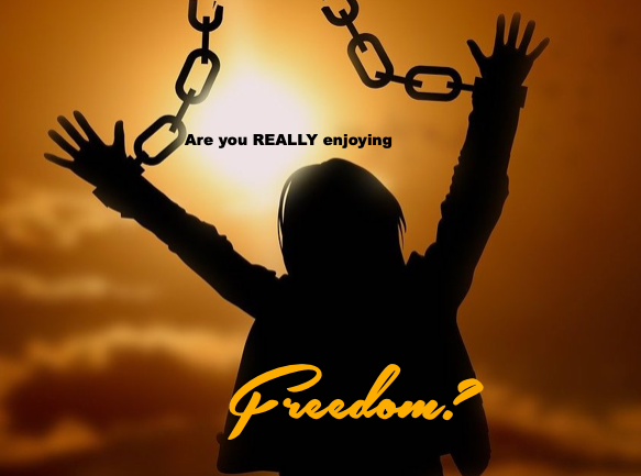 Freedom graphic.png