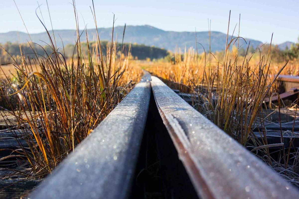 rail frost 2.jpg
