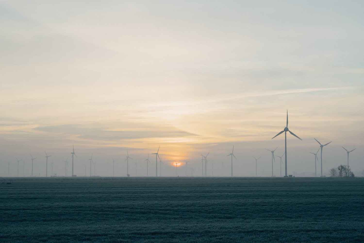 windmills sunset 2.jpg