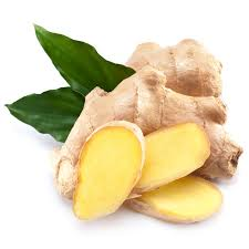 Ginger the master root of nutrition