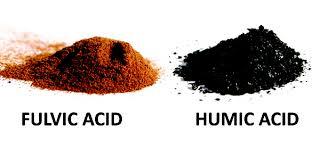 Fulvic humic acid