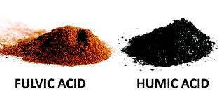 Fulvic humic acid
