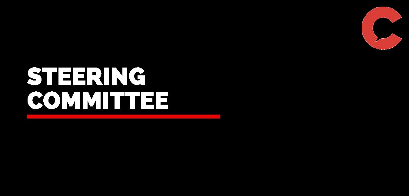 steering (2).png