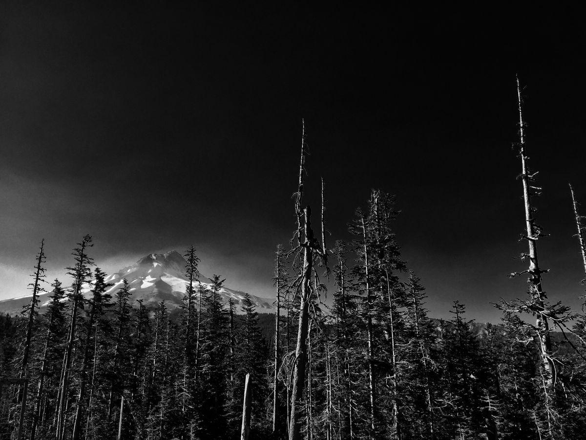 Mt. Hood b:w.jpg