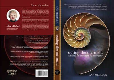 preview-full-Outing the Mermaid (Book Cover).pdf copy.png