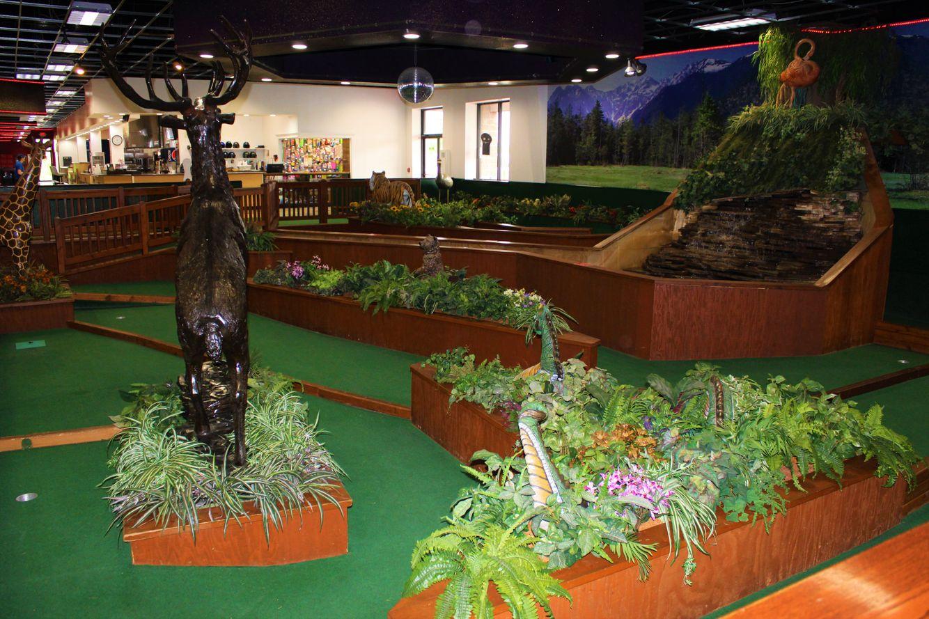 Mini Golf - Indoor