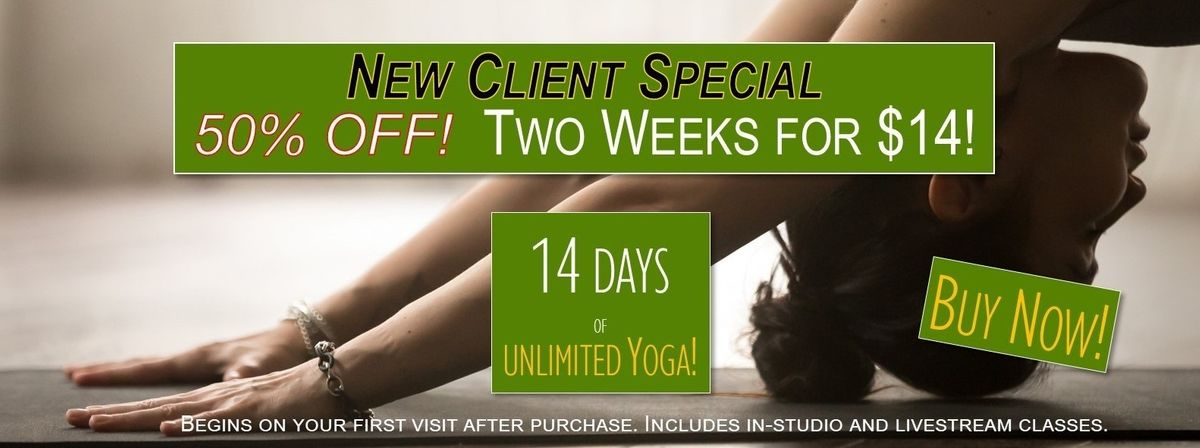 new client special long graphic.jpg