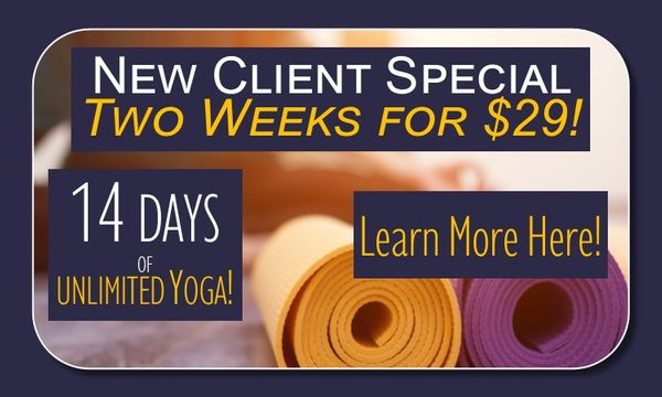 New Client Special $29.jpg