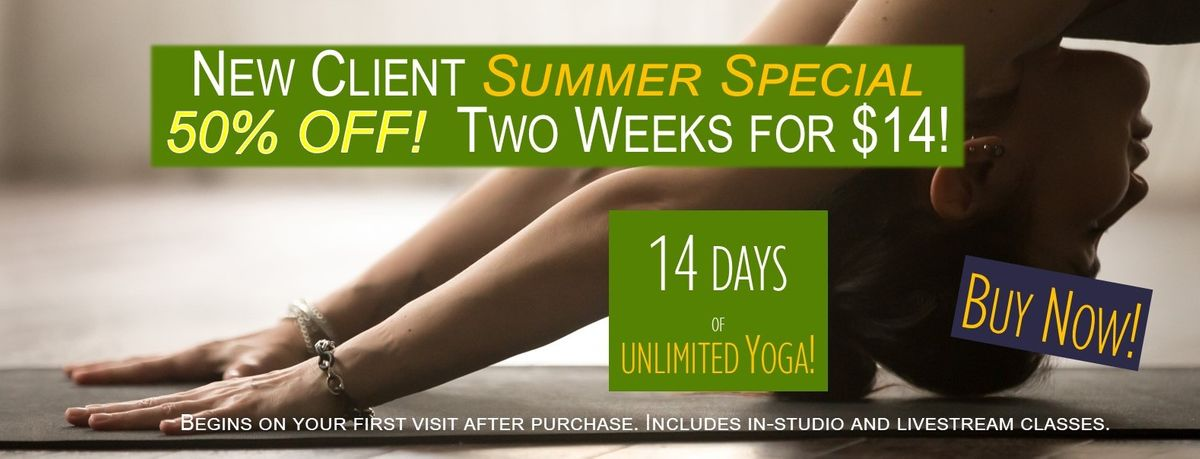 new client summer special long graphic.jpg