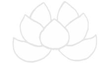 White Flower Studio