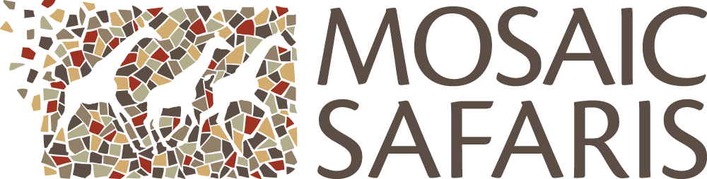 Mosaic Safaris