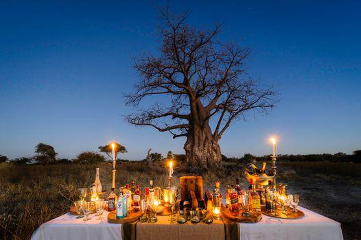 Southern Africa Honeymoon