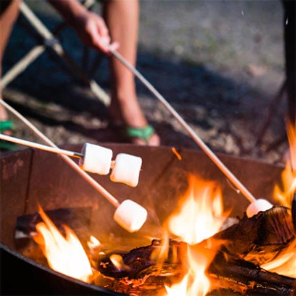 Campsites That Allow Fires