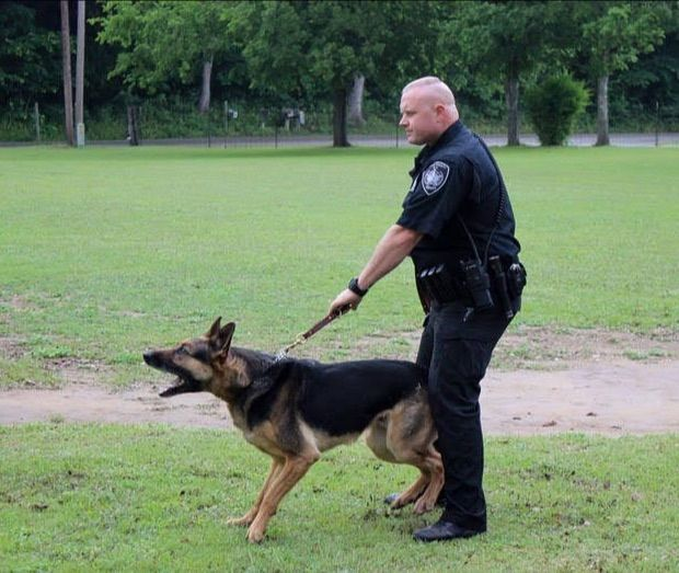 K-9 with his handler