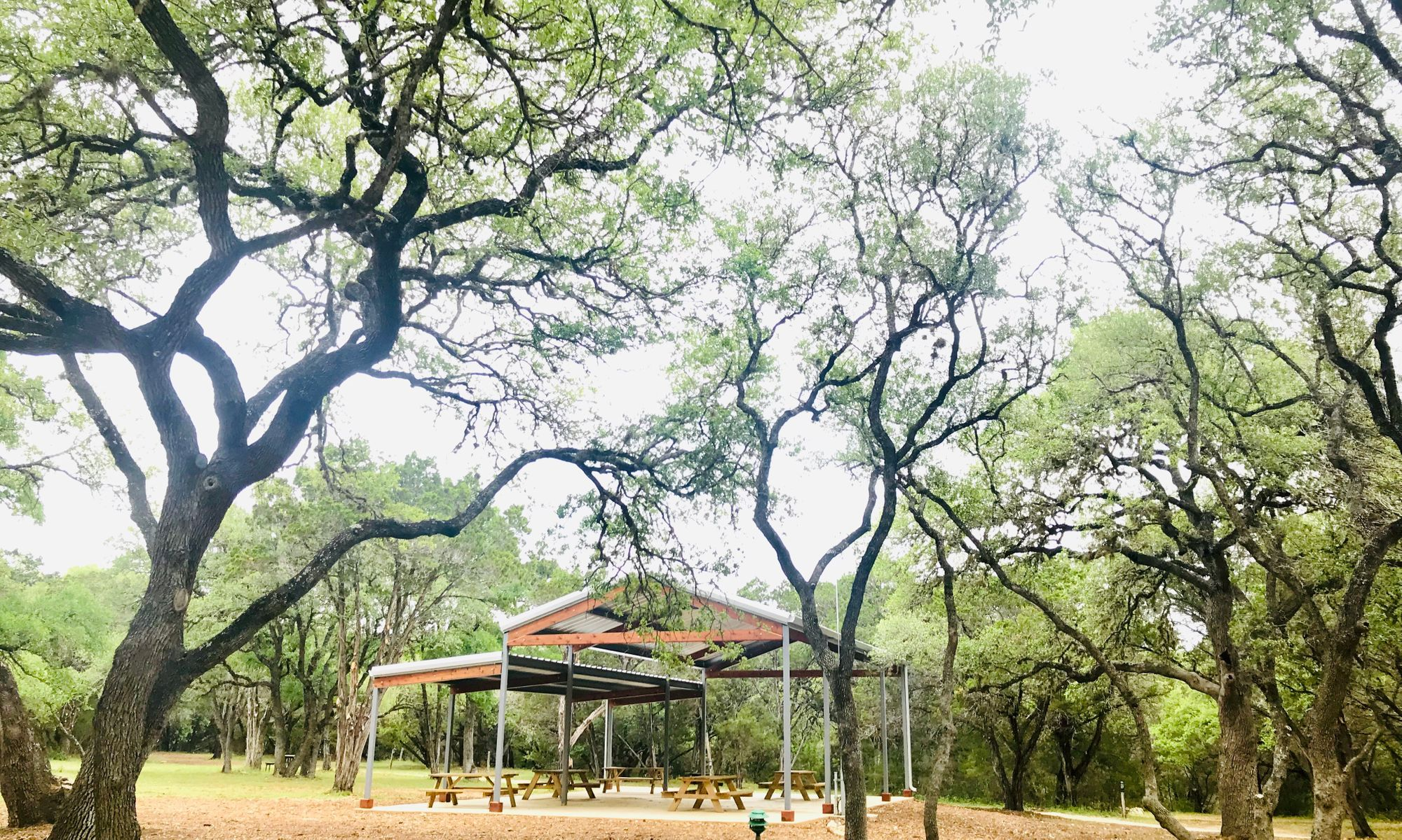 Primitive Pavilion
