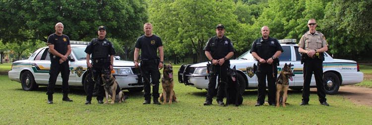 Comal County Sheriff K-9 Unit