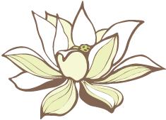 full_lotus_testimonials.png
