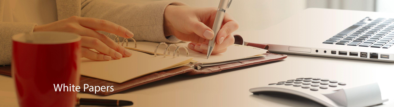 AMG White Paper Website Header Final WT.jpg