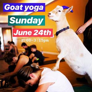 goat yoga flyer1.jpg