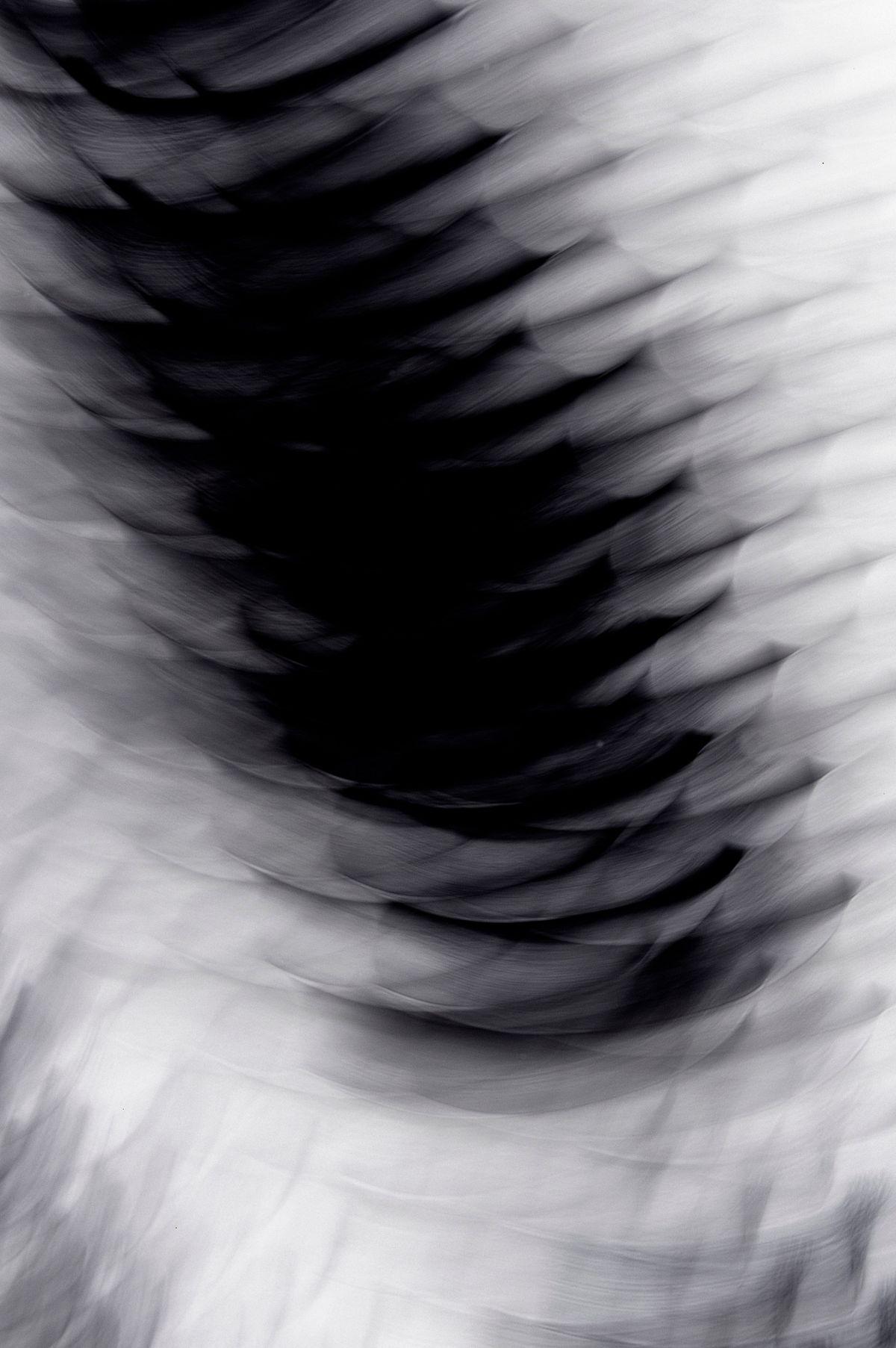 Fundidora, 2007, Black and White Abstract Photography, Shirine Gill