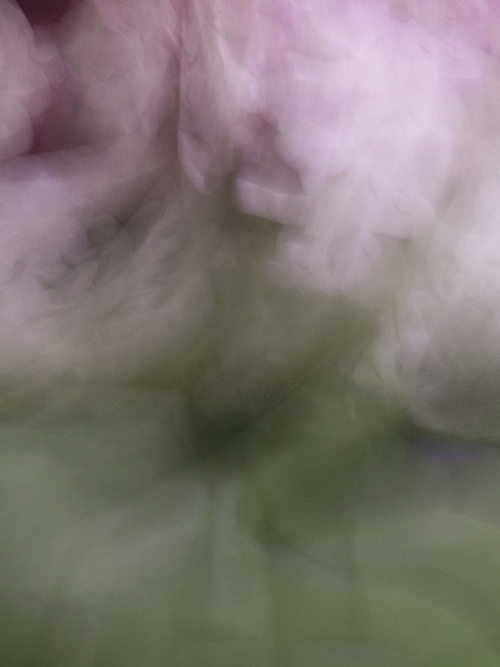 Aquarelles III, 2013, Abstract Color Photography, Shirine Gill