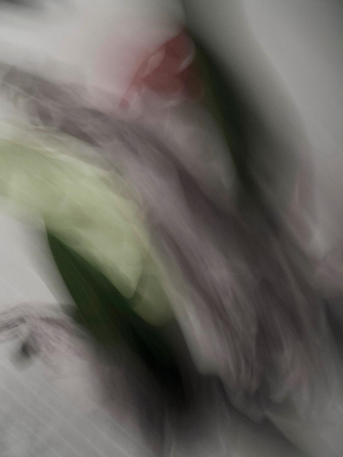 Aquarelles IV, 2013, Abstract Color Photography, Shirine Gill