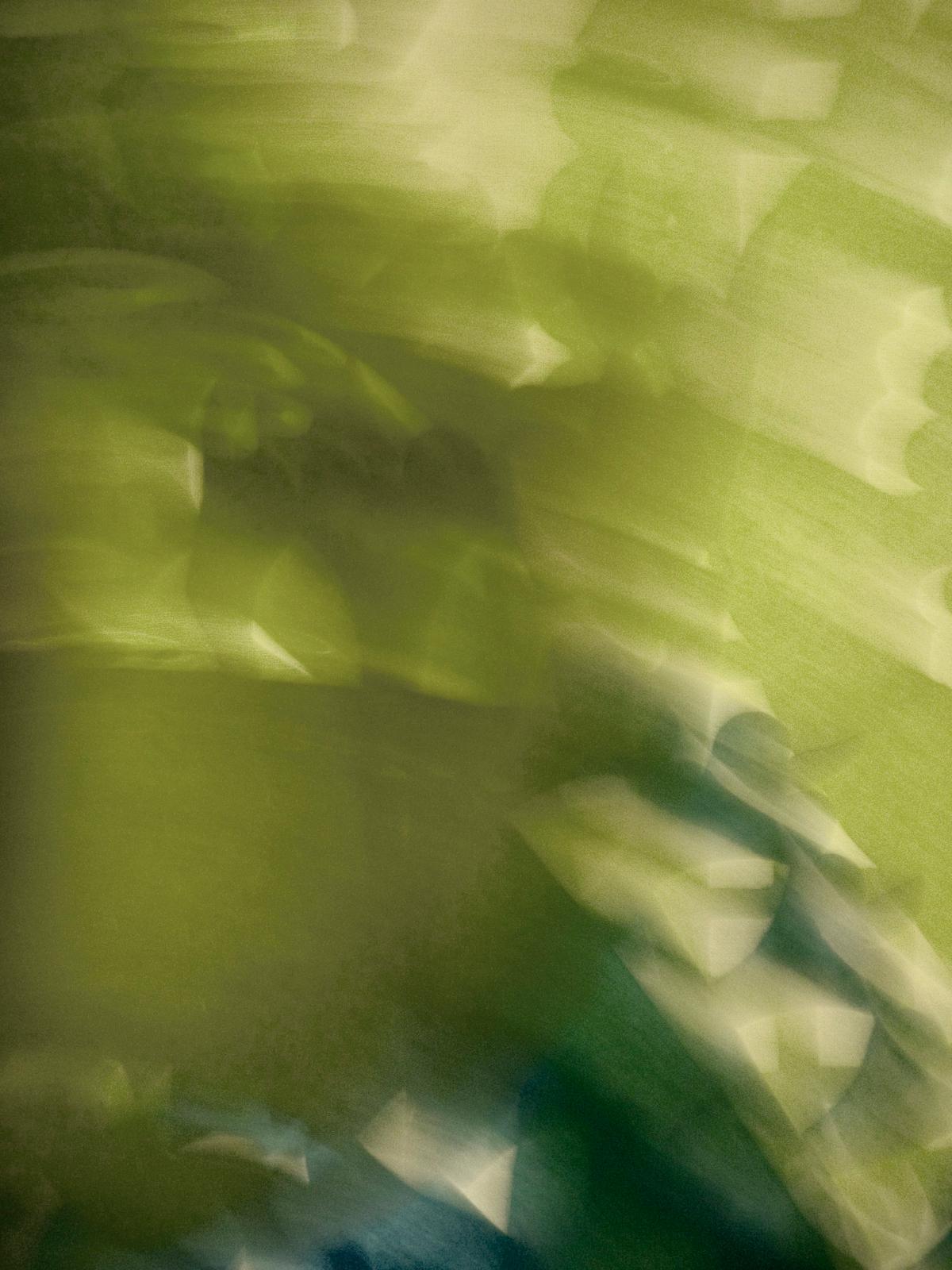 Ganja Dreams V, 2006, Abstract Color Photography, Shirine Gill