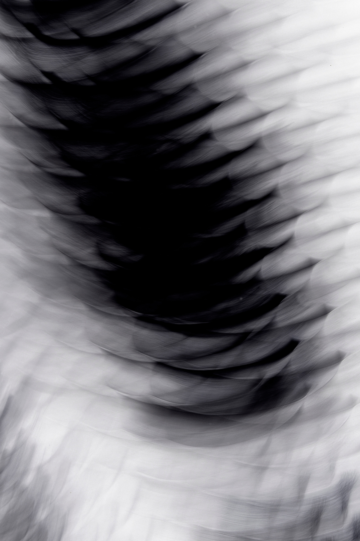 Fundidora, 2007, Black and White Abstract Photography, Shirine Gill