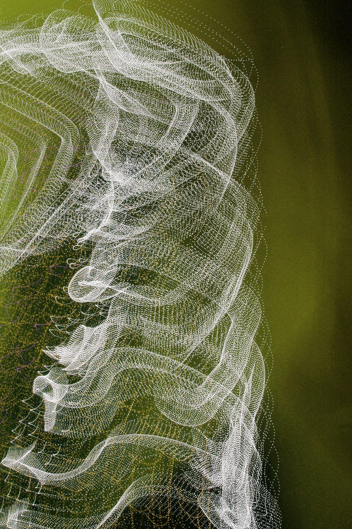 Septimo Cielo, 2006, Abstract Color Photography, Shirine Gill