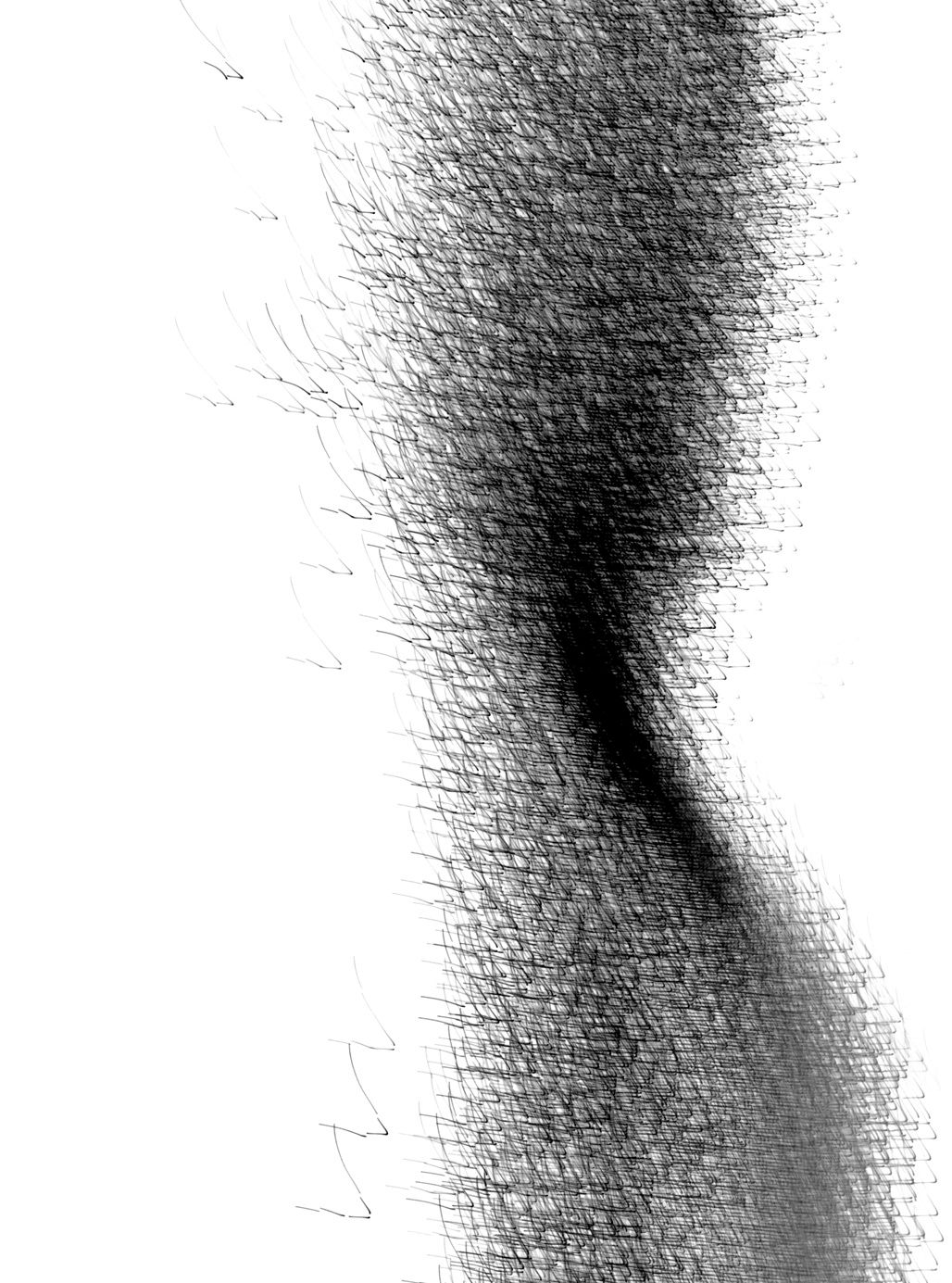 Untitled-IBM, 2011, Black and White Abstract Photography, Shirine Gill