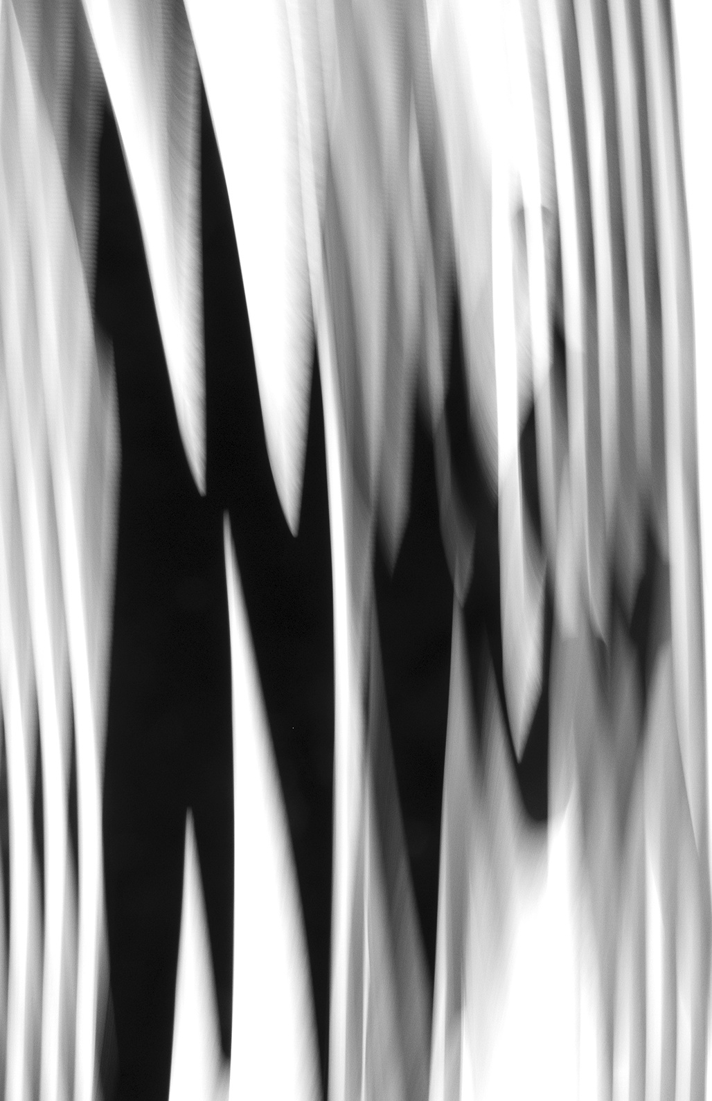Untitled, 2014, Black and White Abstract Photography, Shirine Gill