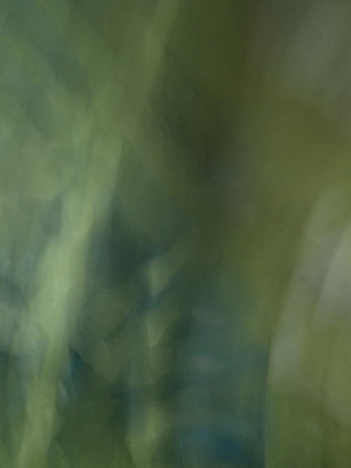 Ganja Dreams, 2012, Abstract Color Photography, Shirine Gill